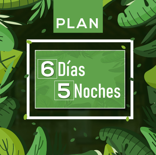 planes-04